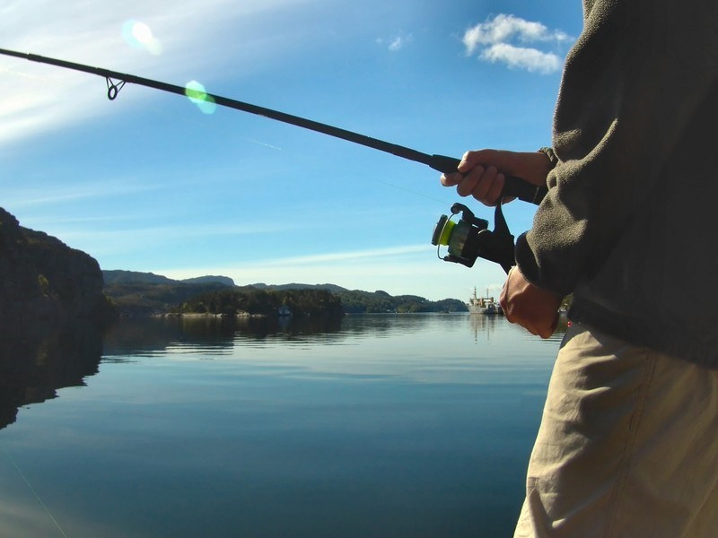 Find out when to fish using a fishing almanac
